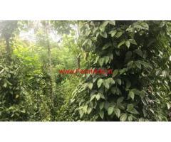 56 Cents Agriculture land for sale at Mundiyeruma in Pampadumpara