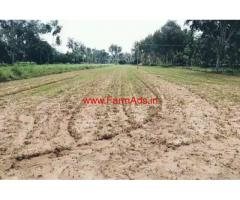 30 guntas farm land for sale Channapatna, 10 KMS from town.