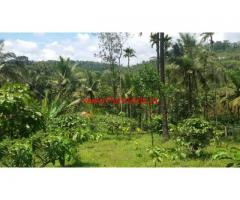 50 cents land for sale near Mananthavady
