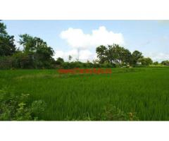 3 Acres Paddy Agriculture lands for sale at Mudigonda , Khammam Rural