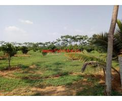 4.15 Acres Farm land for sale at Tayooru, 10 KMS from T-Narsipura Town