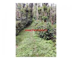 5 Acres Coffee estate for sale on Chikmagalur Balehonnur Road