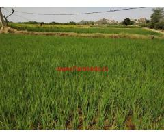 8 Acres Agriculture Land For Sale Near Mucharla Pharmacity