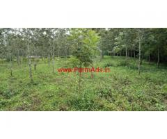 5 acre silver plantation for sale in Mudigere - Chikkamagaluru