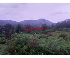 40 Acres record farm land for sale in Hanbal Hobli, Sakleshpura taluk