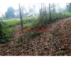 53 Cents agriculture land for sale near Uppoor Ammunje