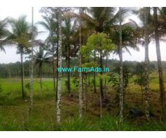 1 Acre coffee farm land for sale near Mananthavady