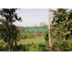 1.25 Acres agriculture land for sale in Mananthavady