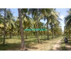 17 Acres Coconut farm land with house for sale near Gobichettipalayam