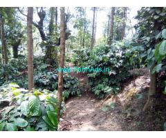 5 Acre Well Maintained Coffee Estate For Sale at Aldur - Balehonnur Road