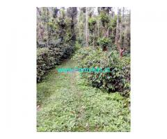5 Acres Coffee estate for sale near Chikmagalur