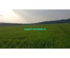 6 Acres Wet Land for sale at Mananthavady