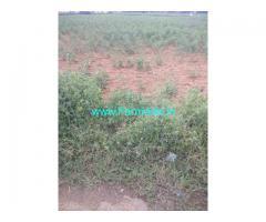 5 Acres agriculture land for sale Peddapuli nagaram,6km from ORR