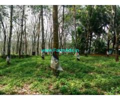 100 Cents Rubber Plantation for sale at Thadiyoor