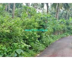 46 Cents Farm Land for sale near Tirurangadi
