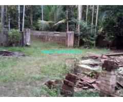 65 Cents Farm Land with Farm House for sale at Chendamangalam