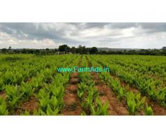 3.98 Acres Agriculture land for sale 5kms from Thally