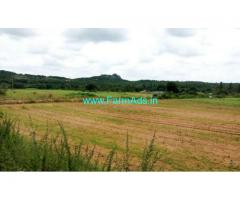1.15 Acres Agriculutre Land for sale at Shoolagiri,50km from Bangalore