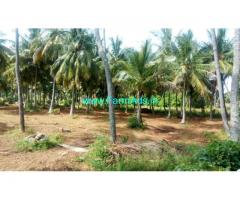 2 Acres Coconut Farm Land for sale at Shooloagiri, 60 KMS from Bangalore