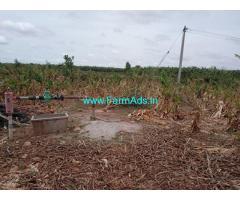 3 Acres Banana Farm for sale at Kadavakalu, Tadipatri