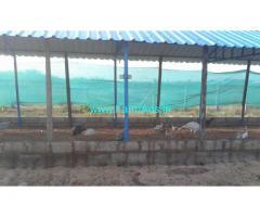 2 Acres Agriculture Land for sale near Padamathur