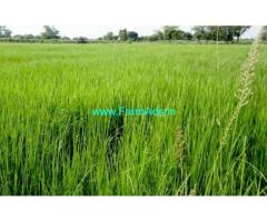 30 Cents Agriculture Land for sale near Alamparai Junction, Nagercoil