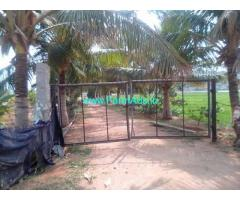 13 Acres Mosambi Farm with Farm house for sale near Anantapuram