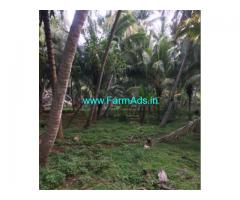 20 Cents Coconut Farm Land for sale near Ethamozhi, Puthukuiuruppu