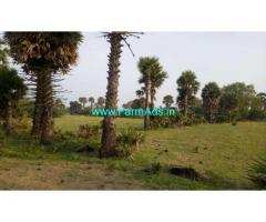 50 Acre Agriculture Land for sale near Aruppukottai