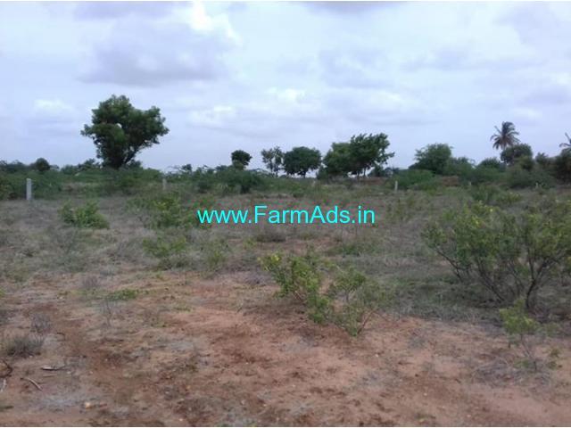 20 acres mango farm available for sale near to Penukonda
