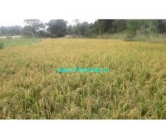5 acre agriculture land for sale 40 kms from Madanapalli