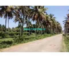 2 Acres 20 gunta coconut farm land for sale, 6 km from Srirangapatna