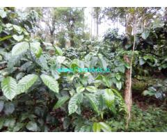 1 Acre Coffee Estate for sale at 20 KMS from Mudigere.