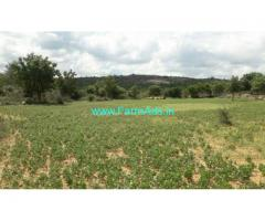 10 acre agriculture farm land is available for sale in Kalakada mandal