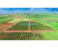 120 Acres Farm land for sale Zahirabad,1km to Zahirabad Chincholi highway