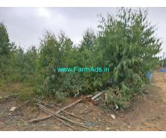 3 Acres farm land for Sale near Tarabahalli, 25kms from Sarjapur