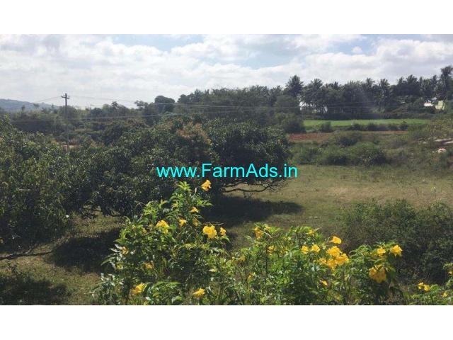 2.5 acres mango farm for sale at Penukonda - AP, 125 km from Bangalore