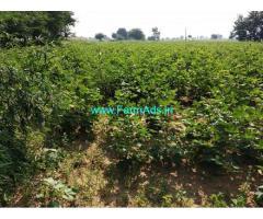 35 Acres Agriculture farm Land for sale near Jogipet