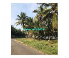 2.5 Acres Coconut Farm Land for sale near Gudimangalam
