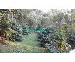 3.5 Acres Coffee Estate for Sale near Haandi