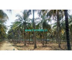 5 acre Coconut farm for Sale in Periyapatti
