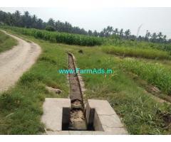 4 Acres Farm land for sale near Palladam Udumalpet Main road