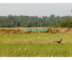 270 Sq meteres Land for Sale near Mapusa