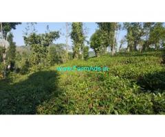 20 Acres Farmland with House for Sale in Periya near to Kuttiady ghat