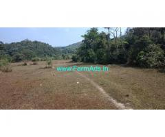 2 acre plain farm land for sale, 25 KMS from Mudigere
