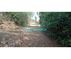 5 acre plain farm land for sale in Mudigere , Covered by jungle trees
