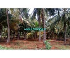 6.15 Acres Coconut Farm Land for sale near Kudankumlam
