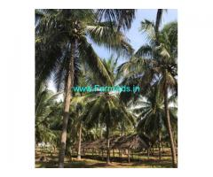 8 Acres Coconut Farm Land with Bungalow for sale in Palladam