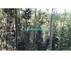 2.5 Acres Agriculture Land with Tiled House for sale at Cherunali