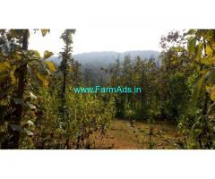 8.16 acre agriculture land for sale at Halvalli Village, Ankola